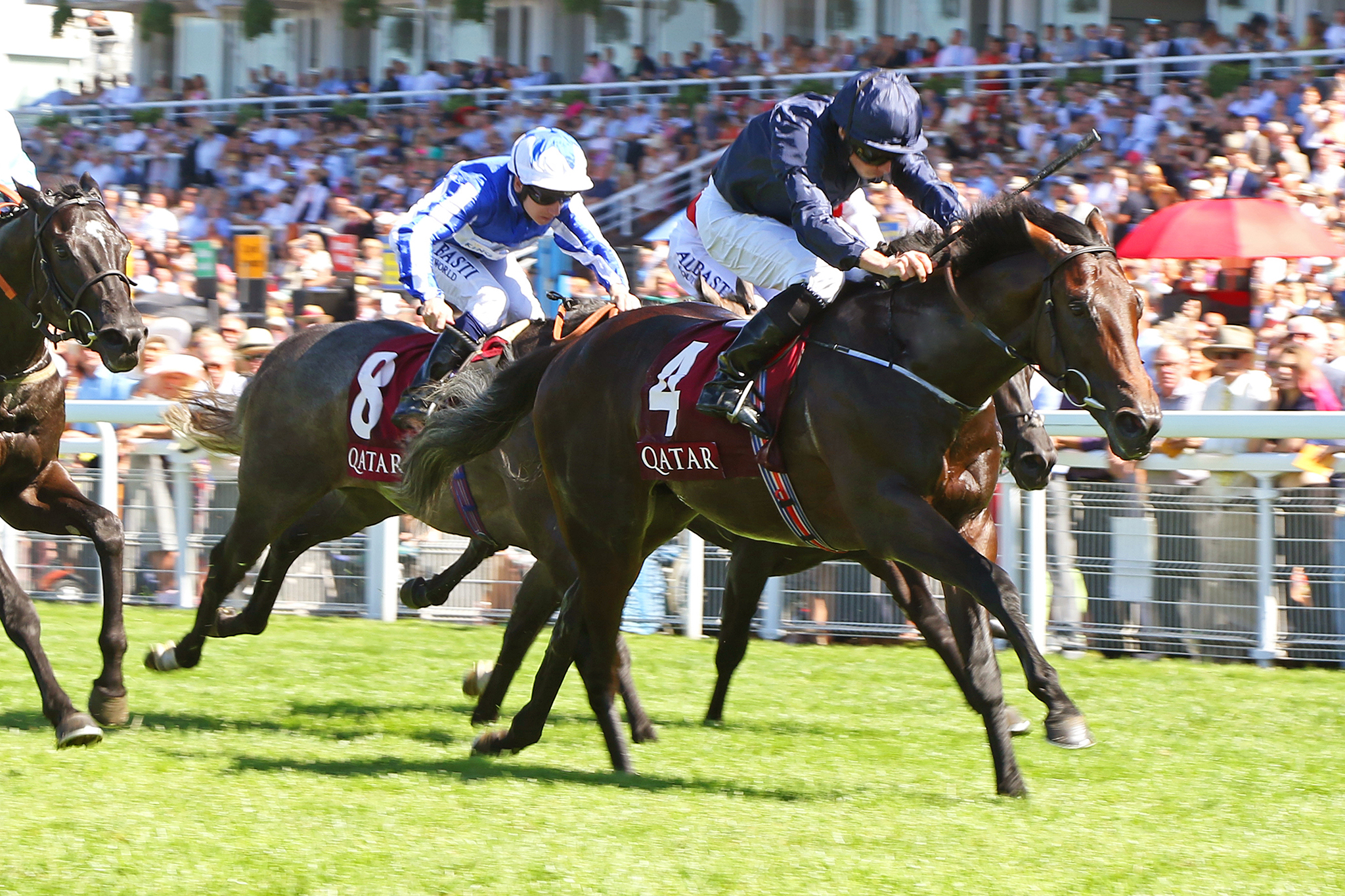LAND FORCE PROVING A 'NATURAL' AS HIS FIRST FOUR MARES ARE SCANNED IN FOAL