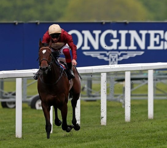 HOMEBRED FILLY MUCHLY WINS AT ASCOT